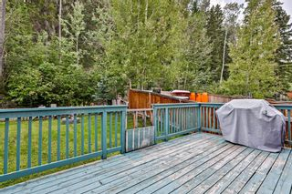Photo 30: 917 Wilson Way: Canmore Detached for sale : MLS®# A1146764
