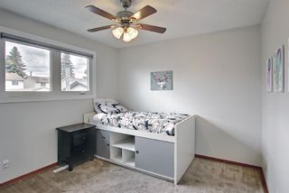 Photo 13: 80 Erin Grove Close SE in Calgary: Erin Woods Detached for sale : MLS®# A1107308