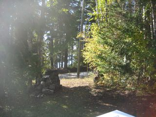 Photo 13: 2544 Vickers  Trail in Anglemont: North Shuswap House for sale (Shuswap)  : MLS®# 10036911