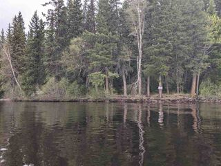Photo 12: LOT 1 COTTAGE Road in Prince George: Blackwater Land for sale (PG Rural West (Zone 77))  : MLS®# R2582686