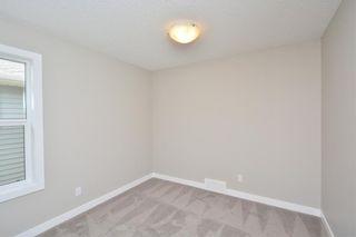 Photo 34: 52 Savanna Road NE in Calgary: Saddle Ridge House for sale : MLS®# C4119489