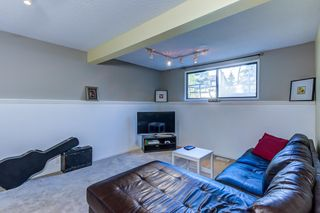 Photo 33: 12 Willowbrook Crescent: St. Albert House for sale : MLS®# E4264517