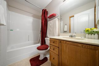 Photo 17: 19 Bridlewood Road SW in Calgary: Bridlewood Detached for sale : MLS®# A1130218