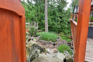 Photo 23: 9850 MCKENZIE Road in Halfmoon Bay: Halfmn Bay Secret Cv Redroofs House for sale (Sunshine Coast)  : MLS®# R2592680