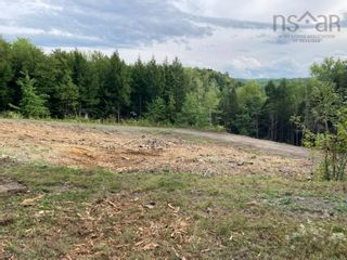 Photo 3: 1504 Greenvale Road in Macphersons Mills: 108-Rural Pictou County Vacant Land for sale (Northern Region)  : MLS®# 202122532