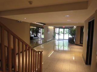 Photo 15: 208 1132 DUFFERIN Street in Coquitlam: Eagle Ridge CQ Condo for sale : MLS®# R2079543