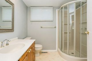 Photo 21:  in Edmonton: Zone 29 House for sale : MLS®# E4248358
