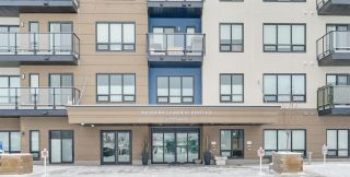 Photo 43: 210 2755 109 Street in Edmonton: Zone 16 Condo for sale : MLS®# E4227521