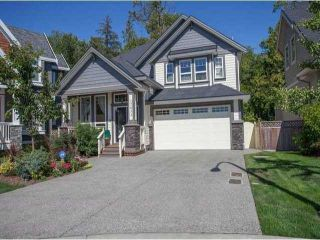 "Photo 1: 17433 1ST Avenue in Surrey: Pacific Douglas House for sale in ""SUMMERFIELD"" (South Surrey White Rock)  : MLS®# F1435587"