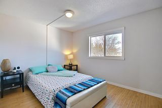 Photo 19: 66 Erin Green Way SE in Calgary: Erin Woods Detached for sale : MLS®# A1094602