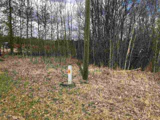 Photo 1: 93-15065 Twp Rd 470: Rural Wetaskiwin County Rural Land/Vacant Lot for sale : MLS®# E4243875