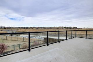 Photo 49: 167 COVE Close: Chestermere Detached for sale : MLS®# A1090324