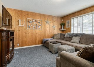 Photo 27: 11 Mt Assiniboine Circle SE in Calgary: McKenzie Lake Detached for sale : MLS®# A1152851
