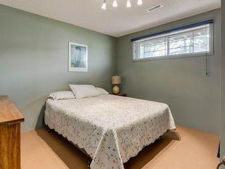 Photo 22: 20 FALCONRIDGE Place NE in Calgary: Falconridge Semi Detached for sale : MLS®# C4302854