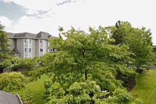 """Photo 22: 205 5556 201A Street in Langley: Langley City Condo for sale in """"Michaud Gardens"""" : MLS®# F1321121"""