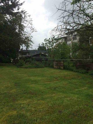 Photo 6: 11917 BURNETT Street in Maple Ridge: East Central House for sale : MLS®# R2169402