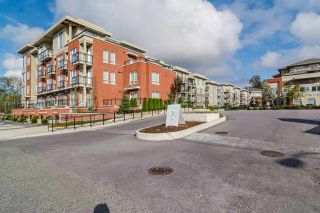 Photo 2: C214 20211 66 AVENUE in Langley: Willoughby Heights Condo for sale : MLS®# R2090668