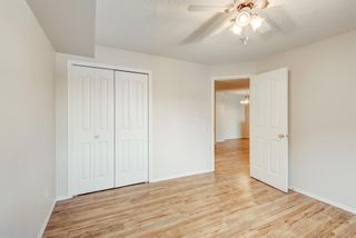 Photo 13: 1306 604 8 Street SW: Airdrie Apartment for sale : MLS®# A1066668