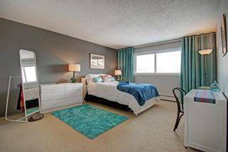 Photo 17: 414 1305 Glenmore Trail SW in Calgary: Kelvin Grove Apartment for sale : MLS®# A1067556