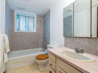 Photo 17: 239 Pinemill Road NE in Calgary: Pineridge Detached for sale : MLS®# A1021035