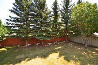Photo 17: 317 WEBER Way in Edmonton: Zone 20 House for sale : MLS®# E4259256