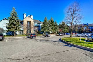 Photo 1: 1021 95 Trailwood Drive in Mississauga: Hurontario Condo for lease : MLS®# W4984485