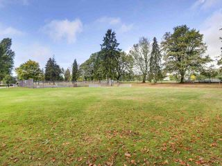 Photo 29: 869 W 63RD Avenue in Vancouver: Marpole House for sale (Vancouver West)  : MLS®# R2503413