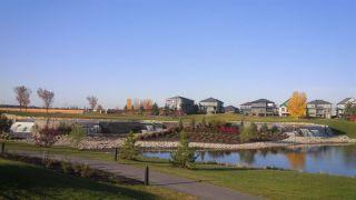 Photo 49: 1130 HAINSTOCK Green SW in Edmonton: Zone 55 House for sale : MLS®# E4253322