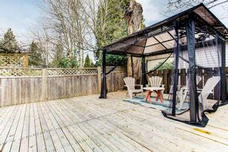 Photo 24: 11754 GRAVES Street in Maple Ridge: Southwest Maple Ridge House for sale : MLS®# R2545983