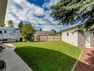 Photo 45: 44 MAITLAND Green NE in Calgary: Marlborough Park Detached for sale : MLS®# A1030134