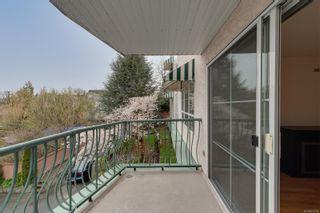 Photo 10: 206 3133 Tillicum Rd in : SW Tillicum Condo for sale (Saanich West)  : MLS®# 872528