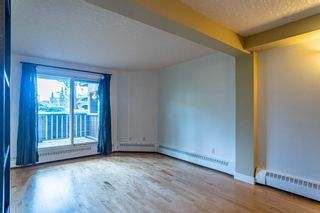 Photo 6: 205 60 38A Avenue SW in Calgary: Parkhill Apartment for sale : MLS®# A1119493