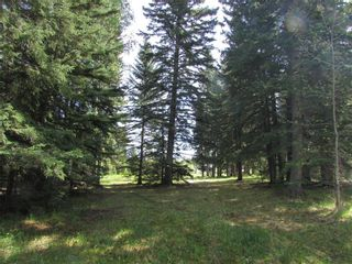 Photo 6: 127, 5241 TWP Rd 325A: Rural Mountain View County Land for sale : MLS®# C4299936