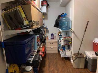 Photo 29: 5220 48 Avenue: Lougheed House for sale : MLS®# E4243675