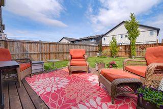 Photo 38: 176 RADCLIFFE Wynd: Fort Saskatchewan House Half Duplex for sale : MLS®# E4246130