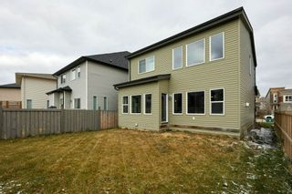 Photo 37: 3954 CLAXTON Loop in Edmonton: Zone 55 House for sale : MLS®# E4226999