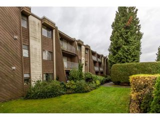Photo 1: 214 3911 Carrigan Court in Burnaby: Government Road Condo for sale (Burnaby North)  : MLS®# R2122112