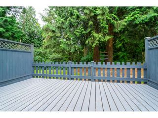 "Photo 17: 176 13738 67 Avenue in Surrey: East Newton Townhouse for sale in ""HYLAND CREEK"" : MLS®# R2290922"