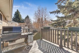 Photo 32: 1425 43 Street SW in Calgary: Rosscarrock Detached for sale : MLS®# A1090704