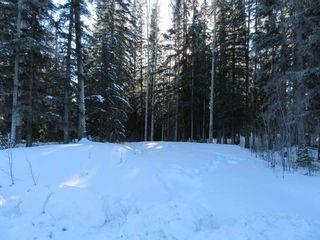 Photo 3: 7592 LUDLOM ROAD: Deka Lake / Sulphurous / Hathaway Lakes Land for sale (100 Mile House (Zone 10))  : MLS®# R2532799
