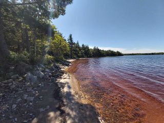 Photo 19: 1380 Canada Hill Road in Canada Hill: 407-Shelburne County Residential for sale (South Shore)  : MLS®# 202112231