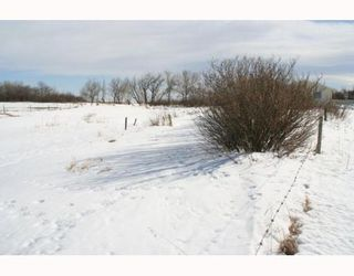 Photo 11:  in : Rural Foothills M.D. Residential Detached Single Family for sale : MLS®# C3371817