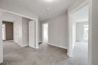 Photo 25: 1130 HAINSTOCK Green SW in Edmonton: Zone 55 House for sale : MLS®# E4253322