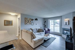 Photo 16: 2011 2000 Edenwold Heights in Calgary: Edgemont Apartment for sale : MLS®# A1142475