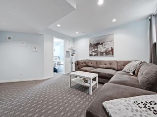Photo 31: 148 Copperfield Common SE in Calgary: Copperfield Detached for sale : MLS®# A1079800