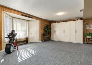 Photo 28: 11 Mt Assiniboine Circle SE in Calgary: McKenzie Lake Detached for sale : MLS®# A1152851