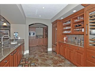 Photo 33: 18 DISCOVERY VISTA Point(e) SW in Calgary: Discovery Ridge House for sale : MLS®# C4018901