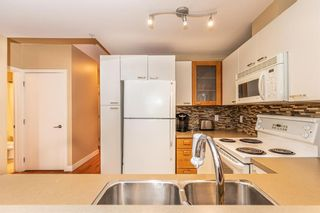 Photo 16: 315 315 24 Avenue SW in Calgary: Mission Apartment for sale : MLS®# A1135536