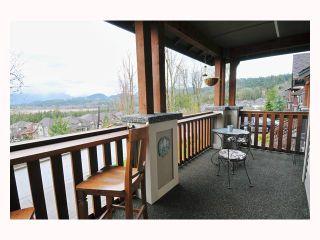 "Photo 9: 22922 VISTA RIDGE Drive in Maple Ridge: Silver Valley House for sale in ""SILVER RIDGE"" : MLS®# V819096"
