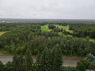 Photo 43: 1238 Baker Place in Prince Albert: Crescent Heights Residential for sale : MLS®# SK867668